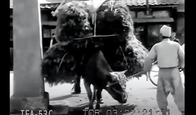 韓国ソウル1930年代その4